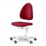 Стул Maximo-регулируемый стул